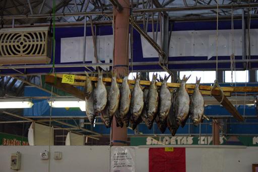 Fisch!