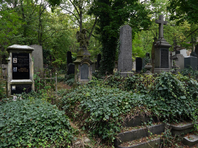 Verwunschen und nicht nur für kulturintessierte Menschen ein toller Geheimtipp in Prag: Der Neue jüdische Friedhof in Prag