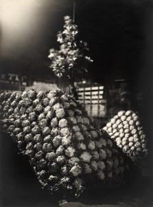Germaine Krull: Les Halles in der Nacht (in Freundschaft zu Van Ecke),© Estate Germaine Krull, Museum Folkwang, Essen