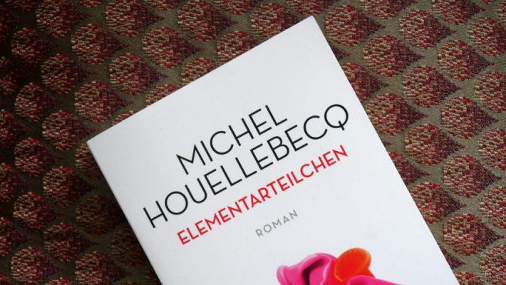 Michel Houellebecq - Elementarteilchen