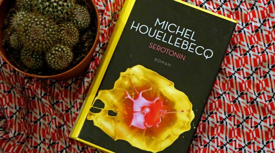 """""""Serotonin"""" von Michel Houellebecq - Rezension auf Sommerdiebe.de"""
