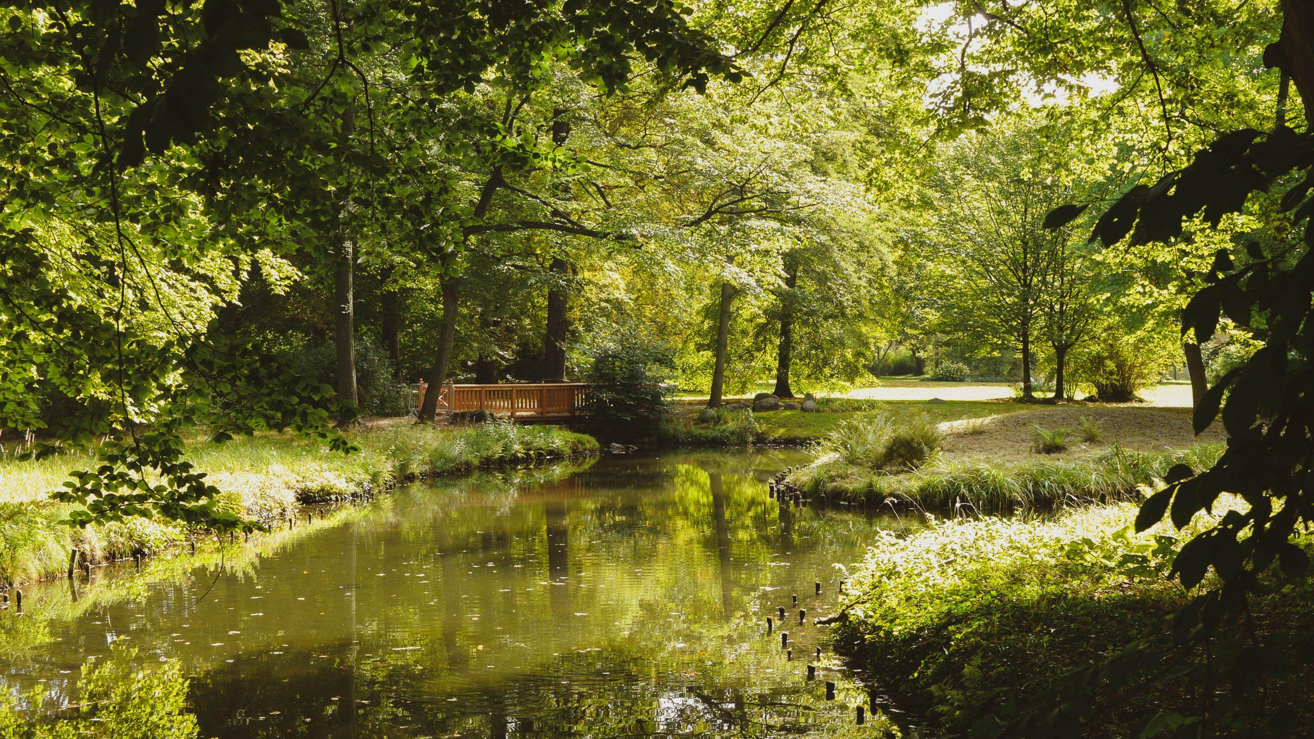 Park und Schloss Branitz: Perfektes Ziel für einen Ausflug